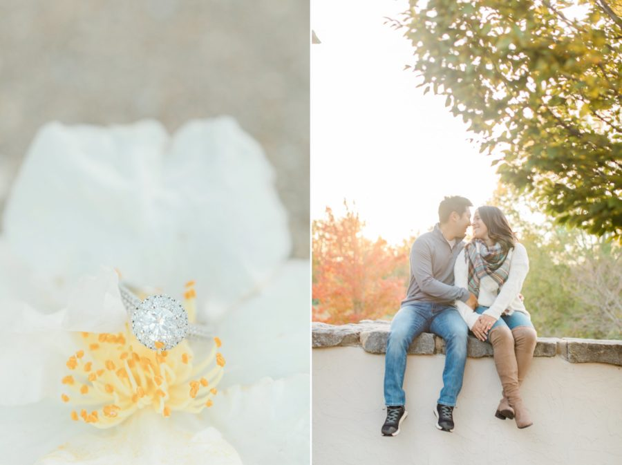 Hotel Domestique Mountain Engagement session with GoldenDoodles by Christa Rene Photography